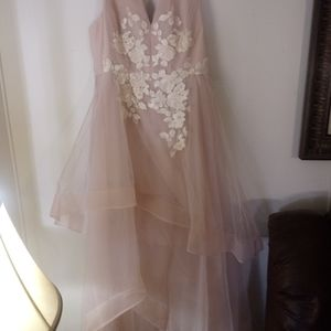 Bare Pink Applique Gown